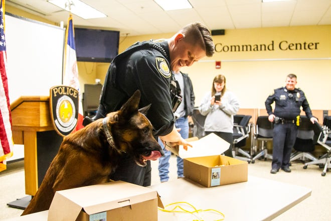 K9 Falo, an explosive and detection dog, licks his lips while  Officer Jackie Anderson opens up a cake for him on Saturday, Dec. 1, 2018, at the University of Iowa Police Department at the Old Capitol Town Center in Iowa City.