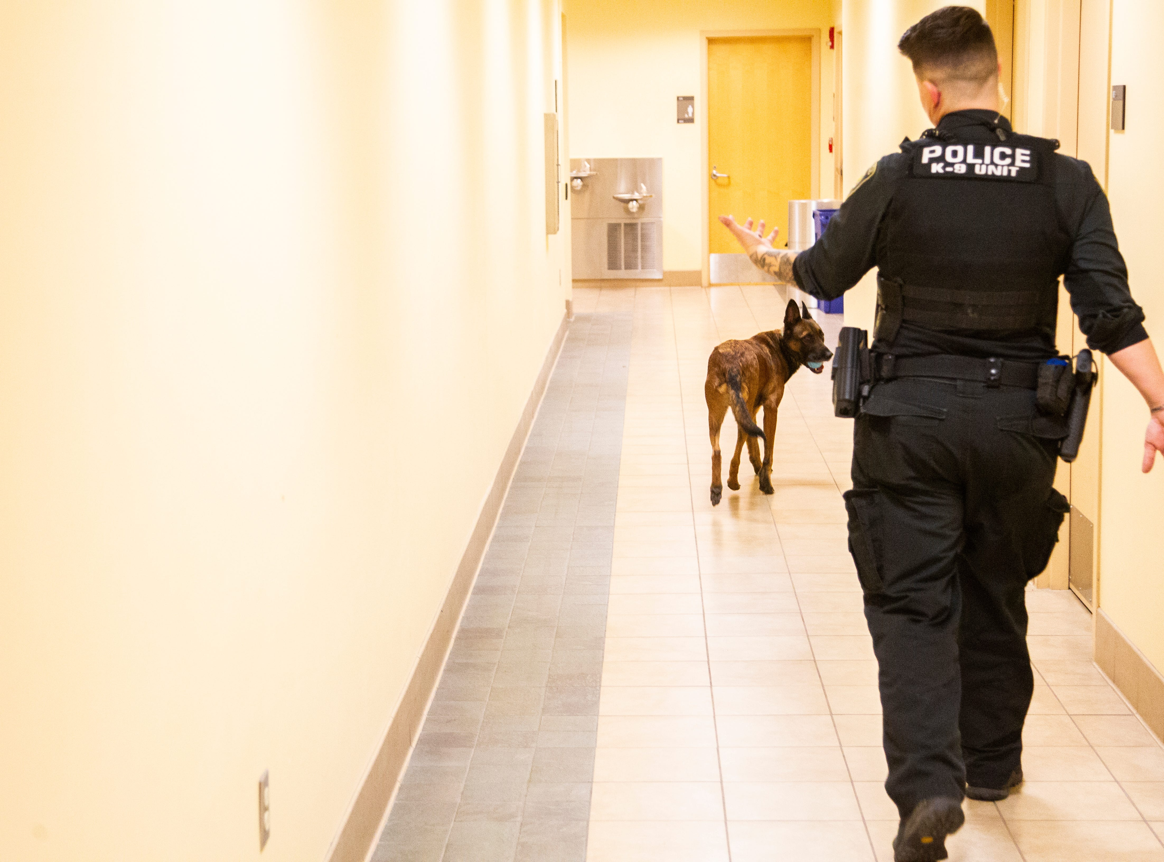 K9 Falo, an explosive and detection dog, walks down a hallway ahead of Officer Jackie Anderson on Saturday, Dec. 1, 2018, at the University of Iowa Police Department at the Old Capitol Town Center in Iowa City.