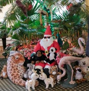 An unusual tropical Christmas tree at the Turner-Dodge House by Michael Beebe is one of over 50 that will be on display starting December 8th.