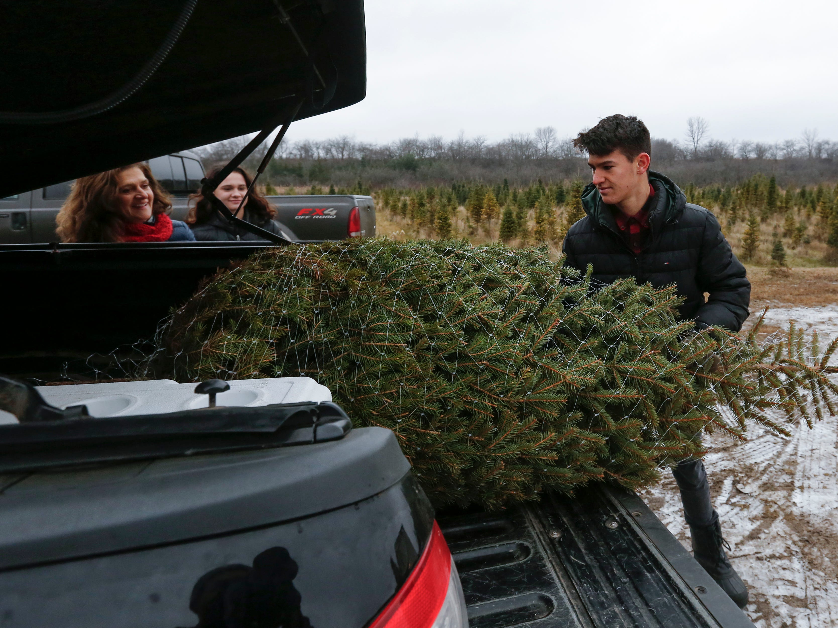 Brady Klarkowski, 15, of Manitowoc, loads his family's hand-cut Christmas tree in the back of their pickup at Taylor Trees Saturday, December 1, 2018, in Mishicot, Wis. Joshua Clark/USA TODAY NETWORK-Wisconsin