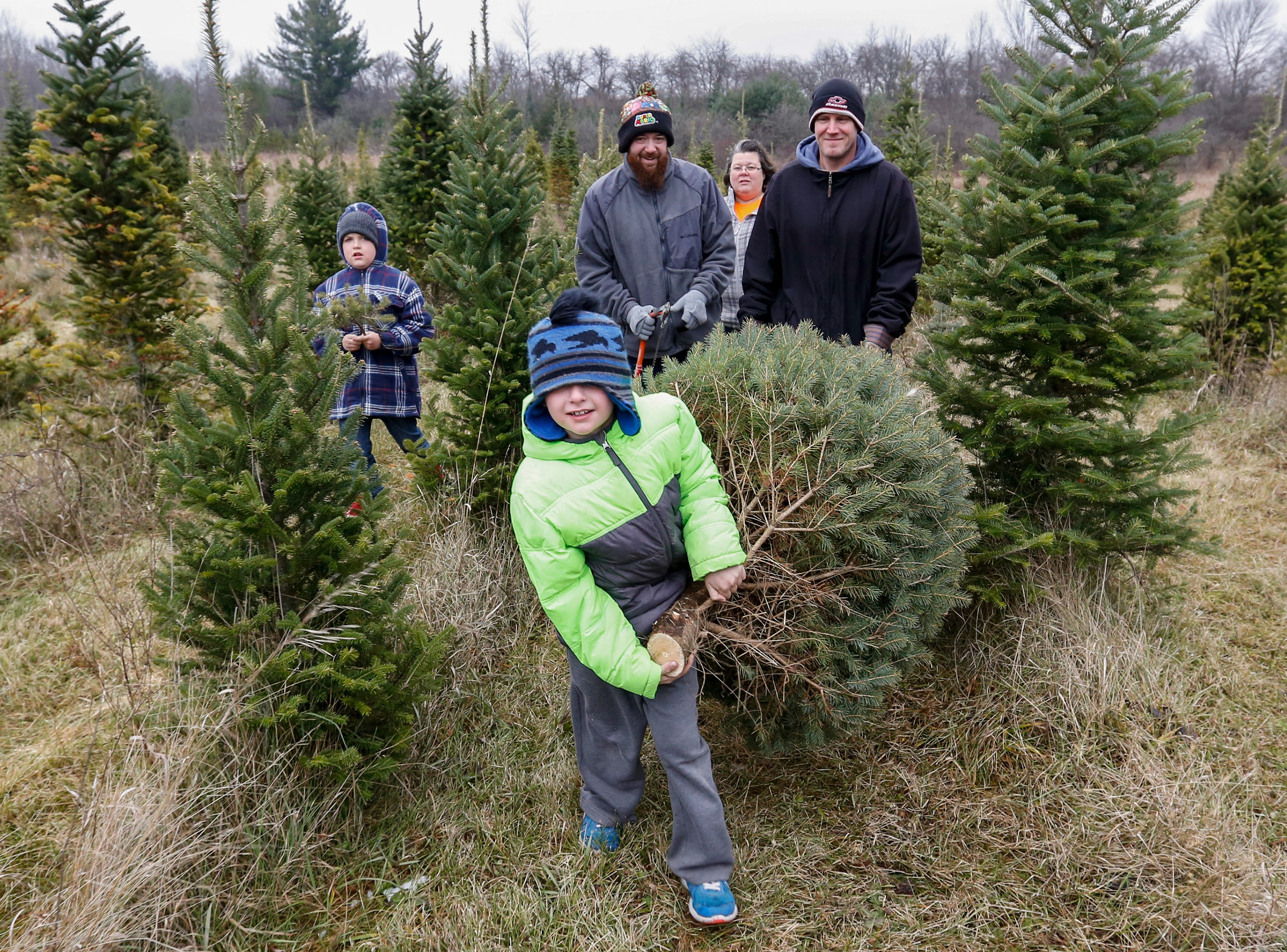 Dominik Graham, 7, helps carry his family's fresh-cut Christmas tree to their car at Taylor Trees Saturday, December 1, 2018, in Mishicot, Wis. Joshua Clark/USA TODAY NETWORK-Wisconsin