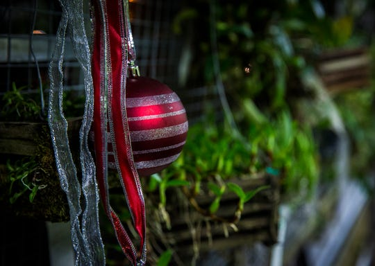 Attendees toured Ball State's holiday decorated Rinard Orchid Greenhouse and were invited to watch Christmas ornament glass blowing demonstrations at the Marilyn K. Glick Center for Glass during their annual open house in 2018.
