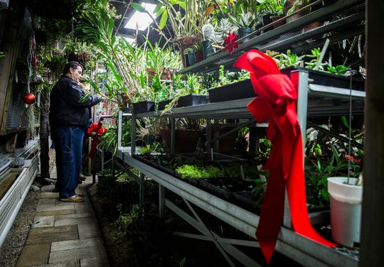 Attendees tour Ball State's decorated Rinard Orchid Greenhouse during the 2018 Holiday in Bloom open house.