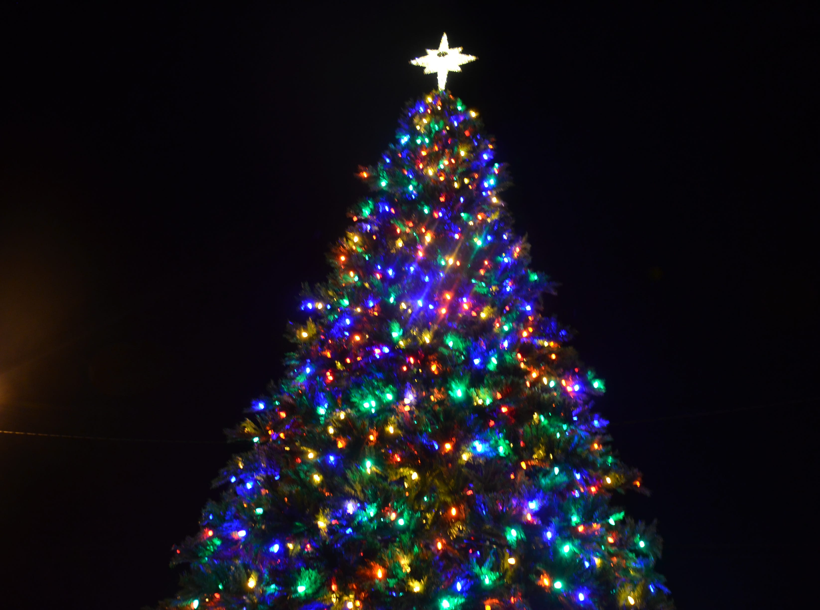 Luna County's first ever Christmas tree at night.