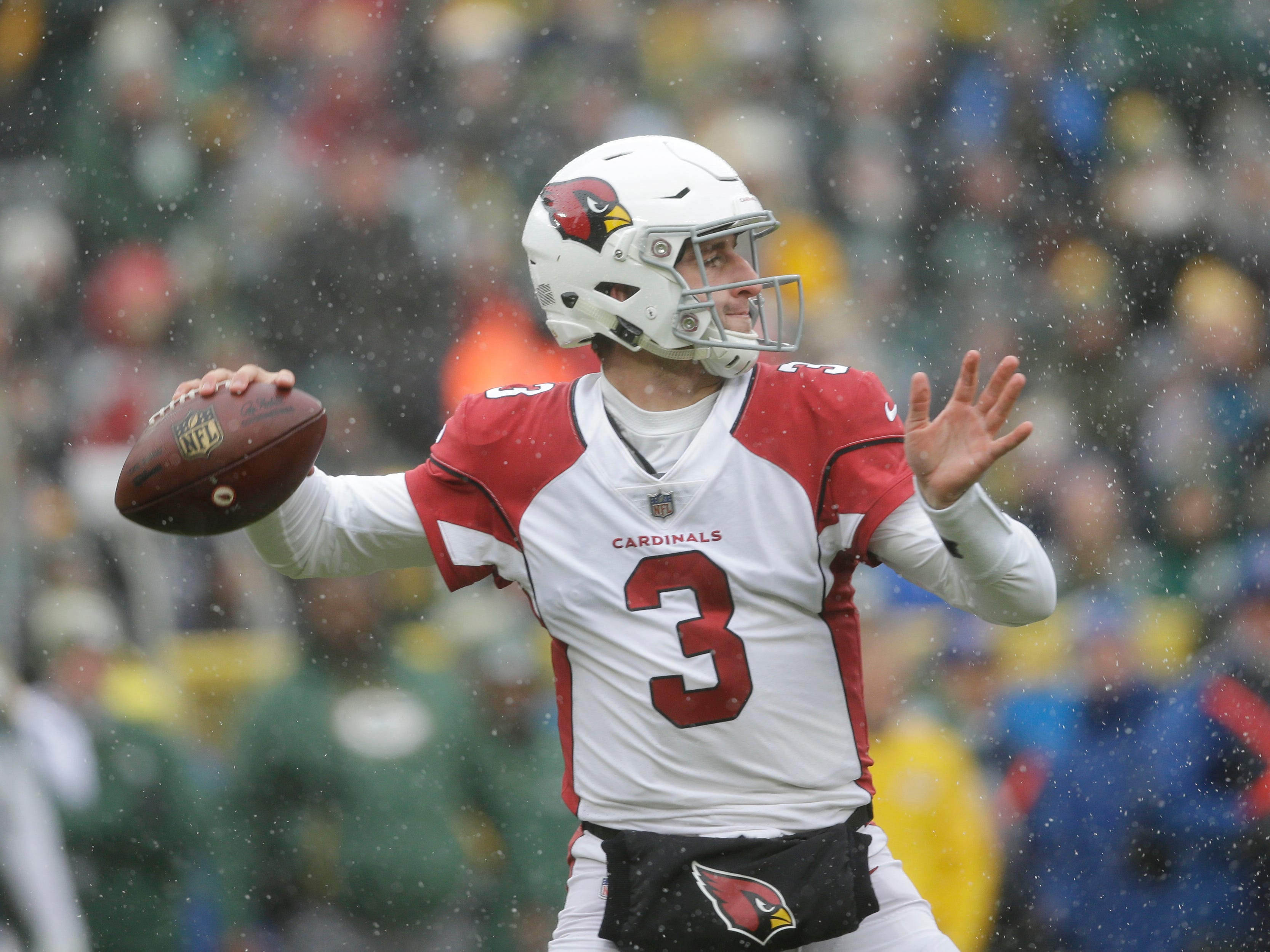 Arizona Cardinals quarterback Josh Rosen looks to pass during the first half of an NFL football game against the Green Bay Packers Sunday, Dec. 2, 2018, in Green Bay, Wis. (AP Photo/Jeffrey Phelps)