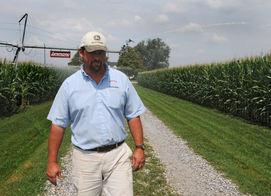 Charles Wright IV of Mardela Springs, walks the edge of this corn field as the irrigations systems waters the corn Monday on Old Railroad Road in Mardela Springs.