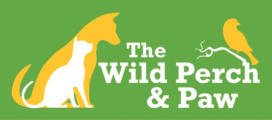 The Wild Perch And Paw Logo Final