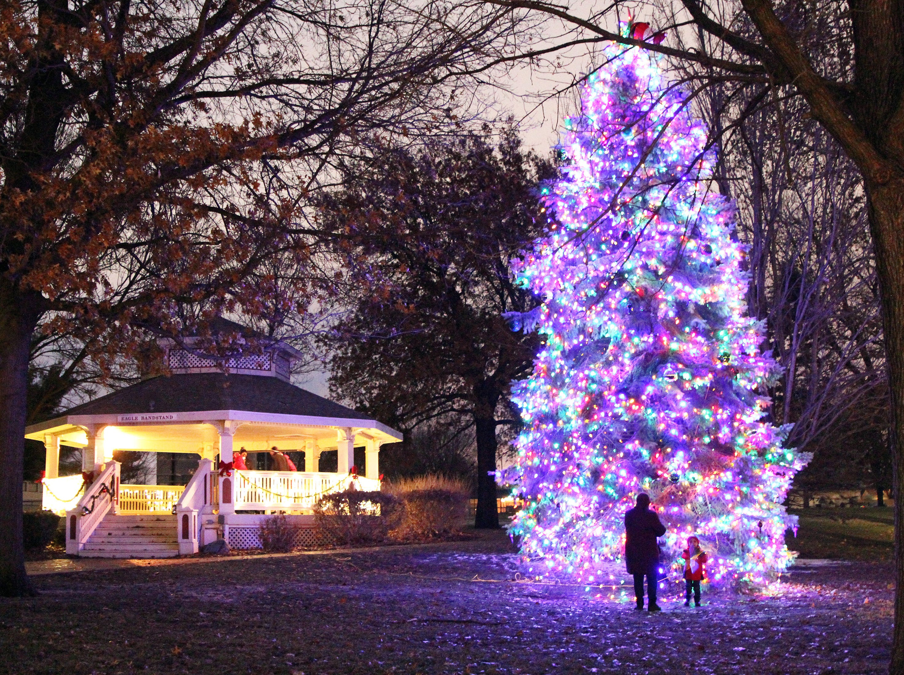 After the ceremony ended, a woman snaps a photo of her grandson in front of the tree during UCAN's third annual Light Up Urbandale on Sunday, Dec. 2, 2018 at Lions Park in Urbandale. Holiday festivities included a visit from Santa, crafts, goodies, official tree lighting ceremony, live reindeer and entertainment. This event helps raise awareness and support for the Urbandale Community Action Network Holiday Helping Hands Programs for families, kids, teens and seniors in need.