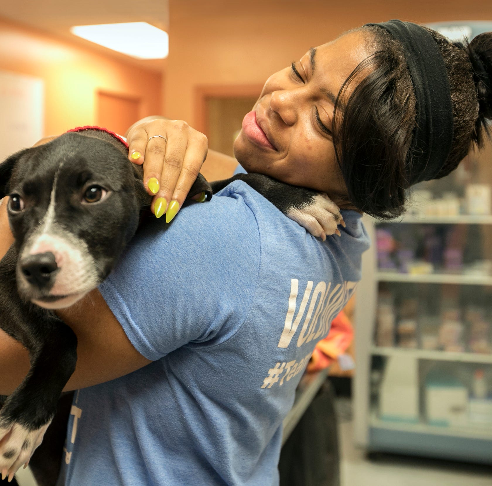 Program pairs homeless youth and shelter dogs, and everybody benefits
