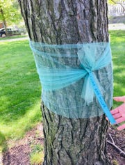 "Many of the victims visited their trees while the ribbons were tied. ""I prayed for some of the other survivors,"" said Emma Ann Miller, 16, of Haslett. ""I prayed that they can get through everything ... ."""