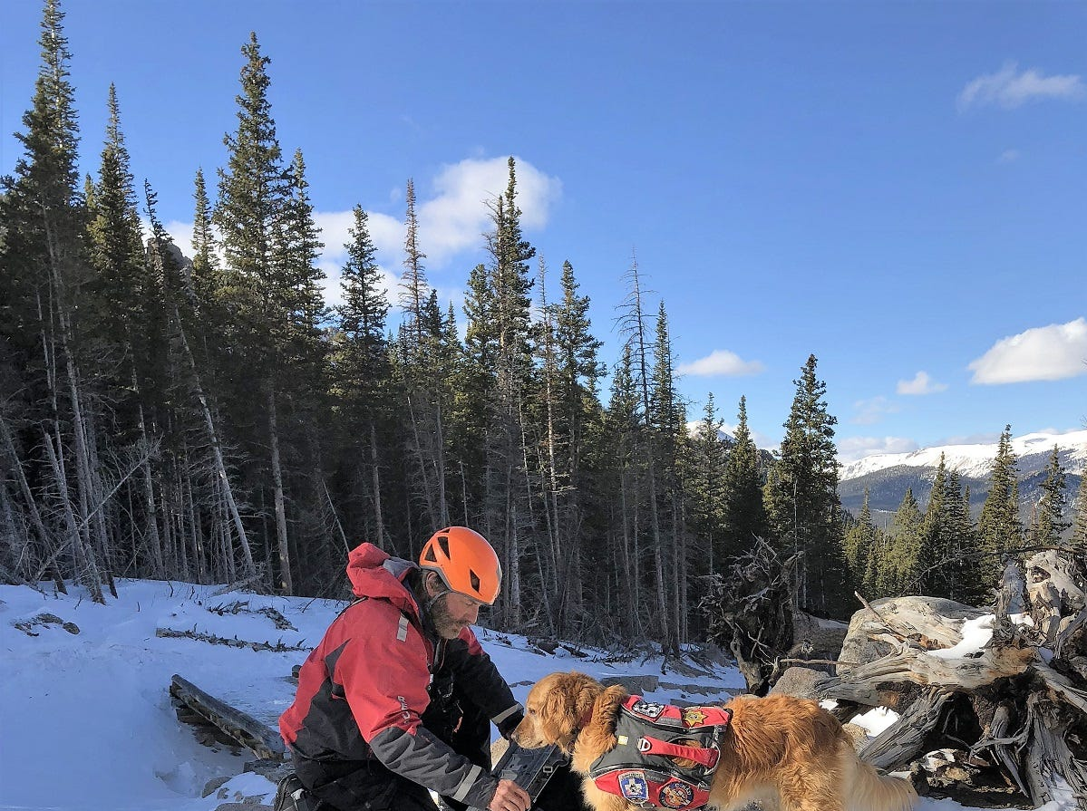 A dog team searches for missing man Micah Tice in Rocky Mountain National Park on Dec. 2, 2018.
