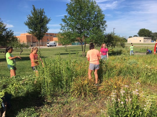Liberty Union FFA participates in a land lab cleanup.