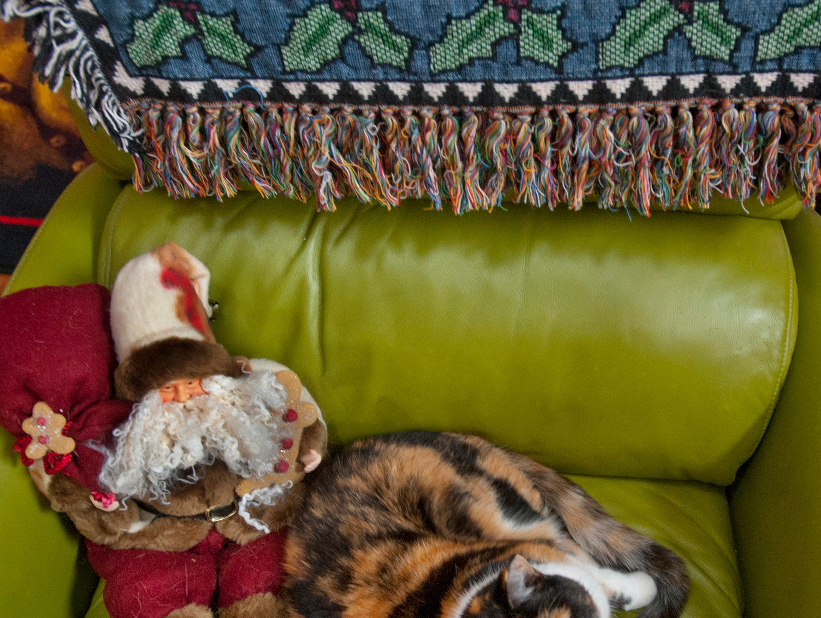 Callie, the McMurry's pet, shares a living room couch with a Santa doll.