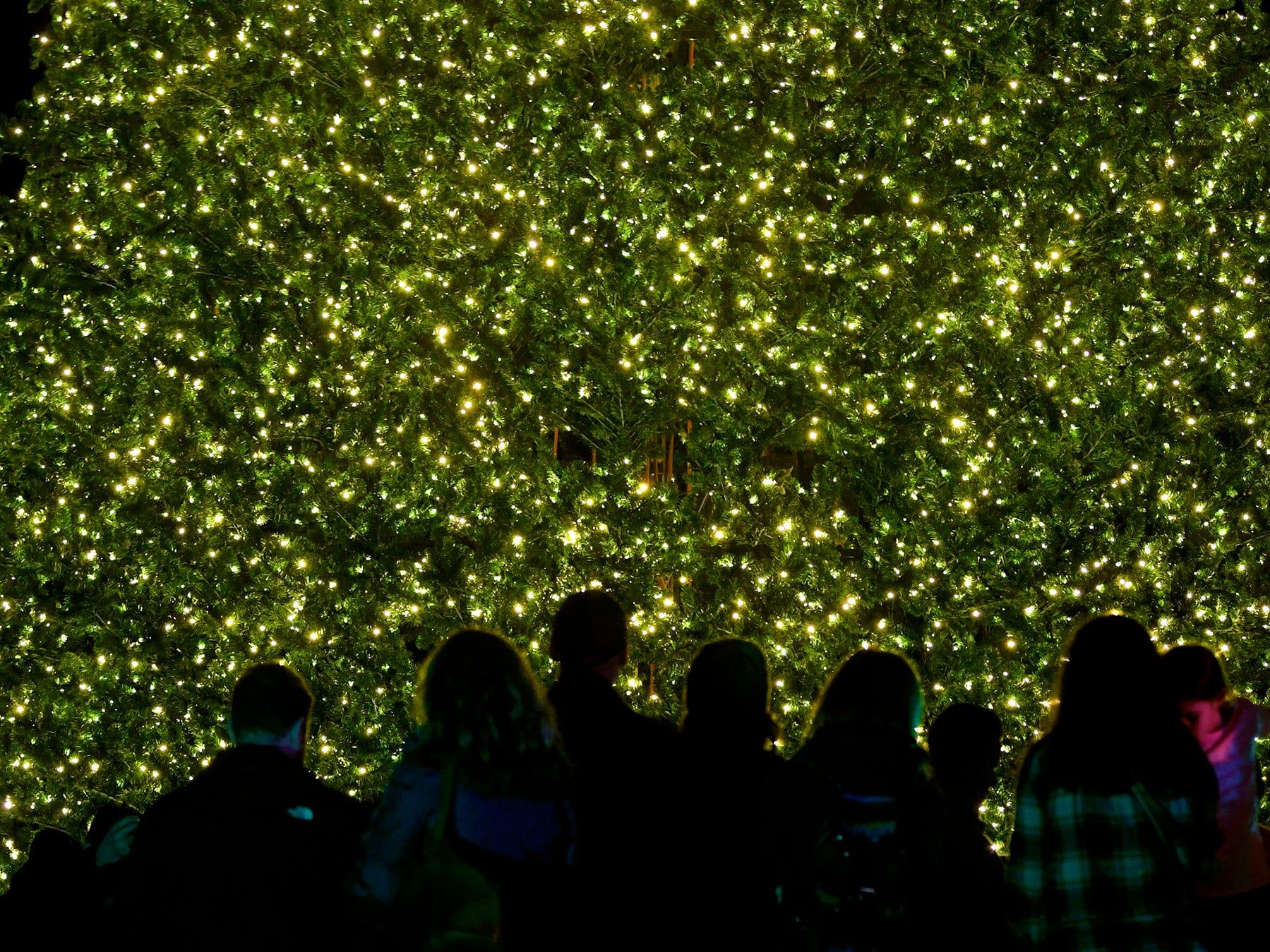 People gather around Franklin's Christmas tree after  Franklins' annual Christmas Tree Lighting on Sunday, Dec. 2, 2018.