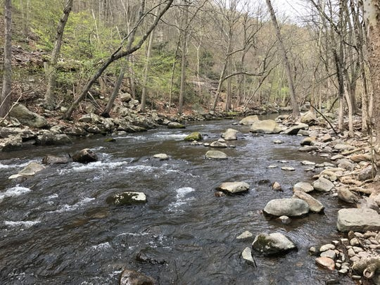 The Pequannock River in lower Passaic County, N.J. is one of the region's trout harboring streams.