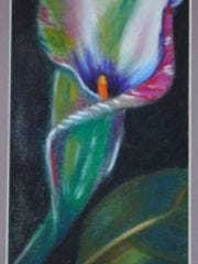 A Lily depicting all the bright colors that spring time has to offer as portrayed by an art student at ENMU-Ruidoso.