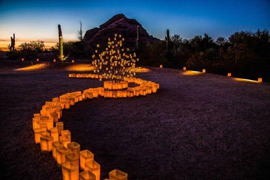 Las Noches de las Luminarias en el Jardín Botánico del Desierto.