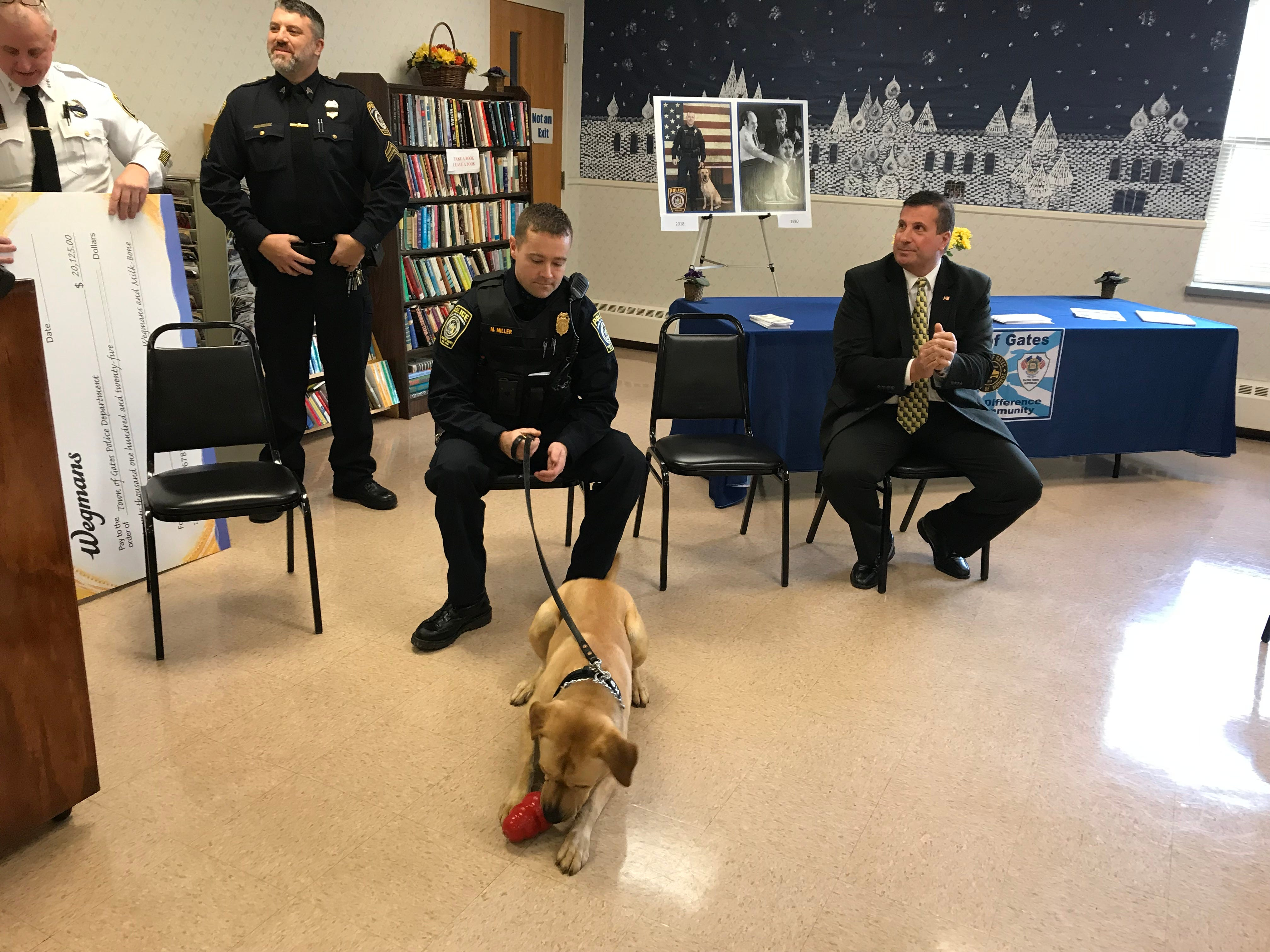 Sonny, the Gates Police Department's drug dog, ignores the hubbub and plays with a toy at a news conference Dec. 3 to announce his arrival on the force. Officer Matthew Miller is his handler. Gates Supervisor Cosmo Guinta is at right.