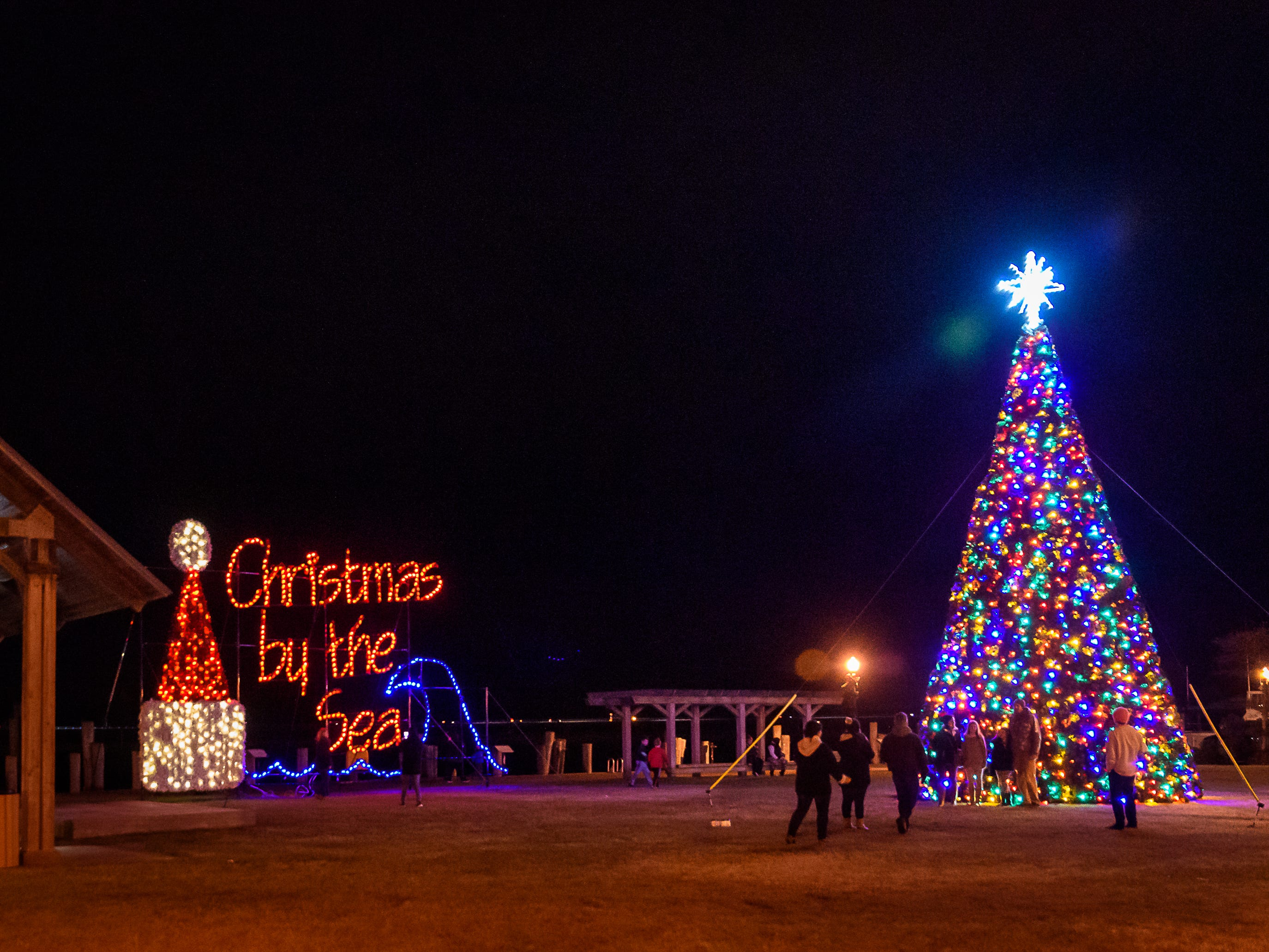 The Chincoteague Christmas tree lights up the downtown Robert Reed Park.