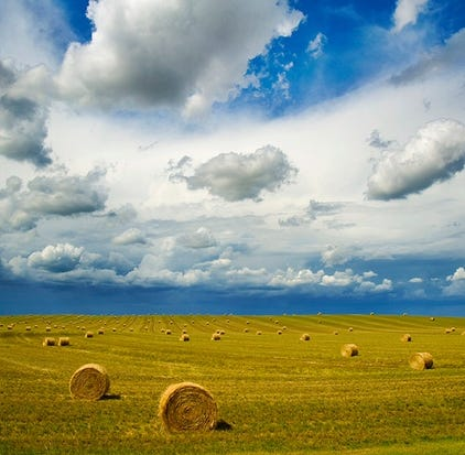 Ag producers in South Dakota shared $19.4 million in federal payments this fall. The money is to mitigate financial damages they've suffered due to an ongoing trade war with China.
