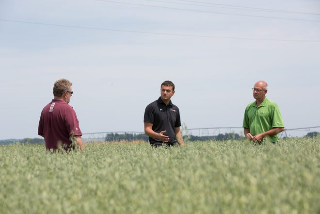 Darrel Daniels, a Wisconsin Syngenta sales representative, (from left) Jay Schumitsch of Schumitsch Seed Inc. and Pat Prasalowicz, a crop specialist for Insight FS, overlook an experimental oat field with plant growth regulator applied.