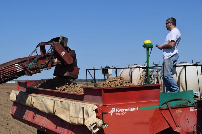 Certified Wisconsin seed potatoes are loaded into a Kverneland UN 3300 planter as Joe Augustine looks on at the Schroeder Brothers Farms, Inc., in Antigo, Wis.