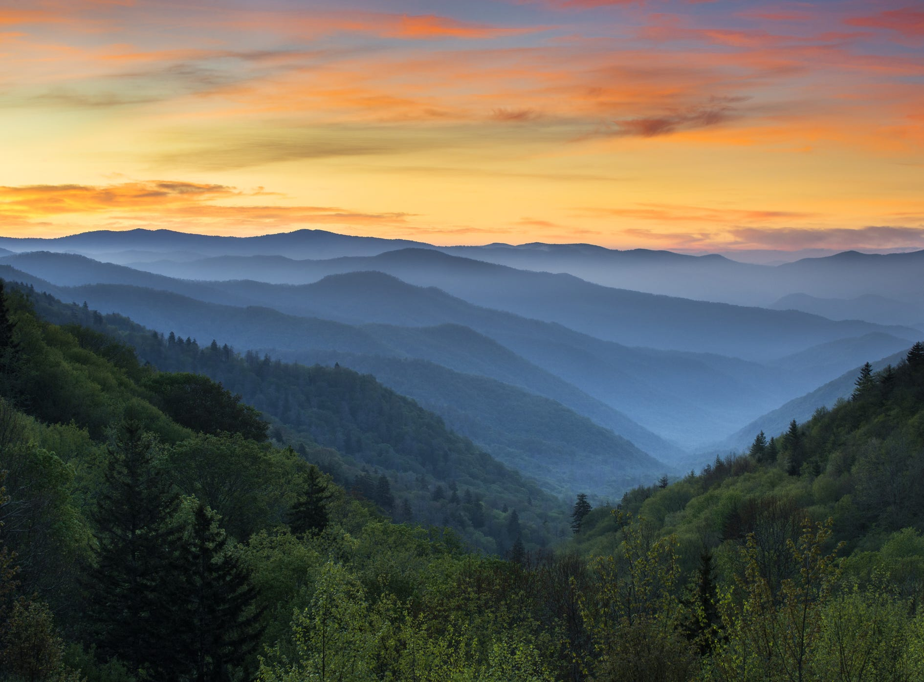 "No. 5: Great Smoky Mountains; 191% increase in bookings, 190% increase in searches. ""Home to America's most visited national park due to its central location, general ease in getting there, and affordability, the Smokies are calling. Two of the park's most iconic trails (among the 800 miles of trails to choose from) are reopening after a wildfire two years ago."""
