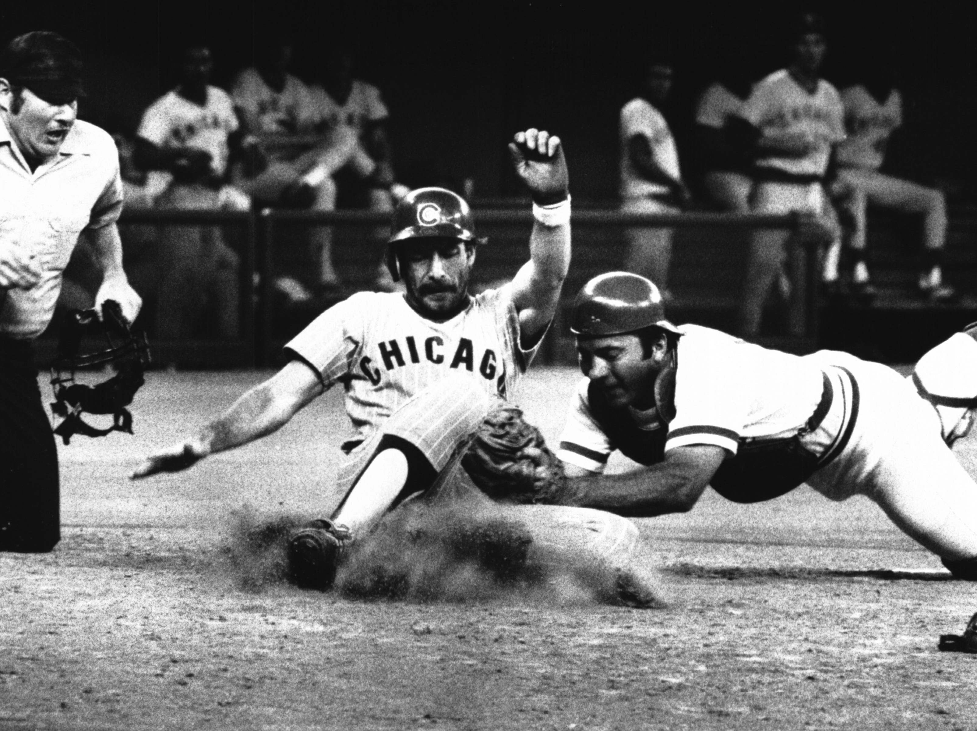 AUGUST 26, 1978: He's Out: Amateur umpire Les Treitel makes the ruling as Johnny Bench puts tag on Cubs' Tim Blackwell in fourth-inning play which saw Mike Lum's throw prevent a run. Regular umpires struck Friday afternoon. The Enquirer/Dick Swaim FROM A SATURDAY AUGUST 26, 1978 REFER: Cubs' Reuschel Hangs Loss On Reds; Page B-1.