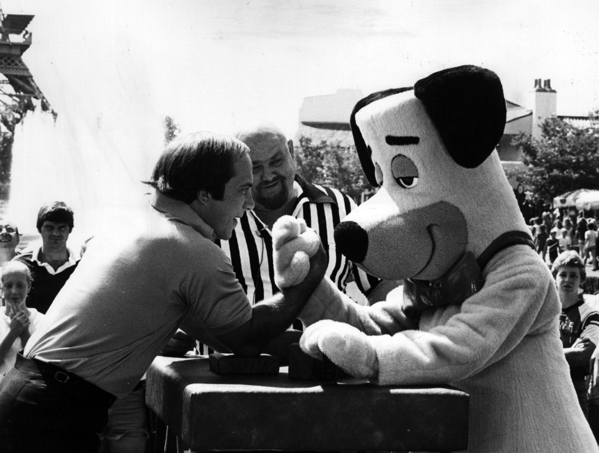 """AUGUST 29, 1980: Bench Bested: Co-host Johnny Bench, Cincinnati Reds superstar catcher, appears to have met his match at arm-wrestling when challenged by one of the many """"animal"""" mascots at Ohio's Kings Island Amusement Park during taping of segments to be presented on NBC-TV's new sports/variety series, """"Games People Play,"""" Thursday, Sept. 11 and 18 (8-9 p.m. NYT). Photo credit: NBC Photo scanned August 8, 2013"""