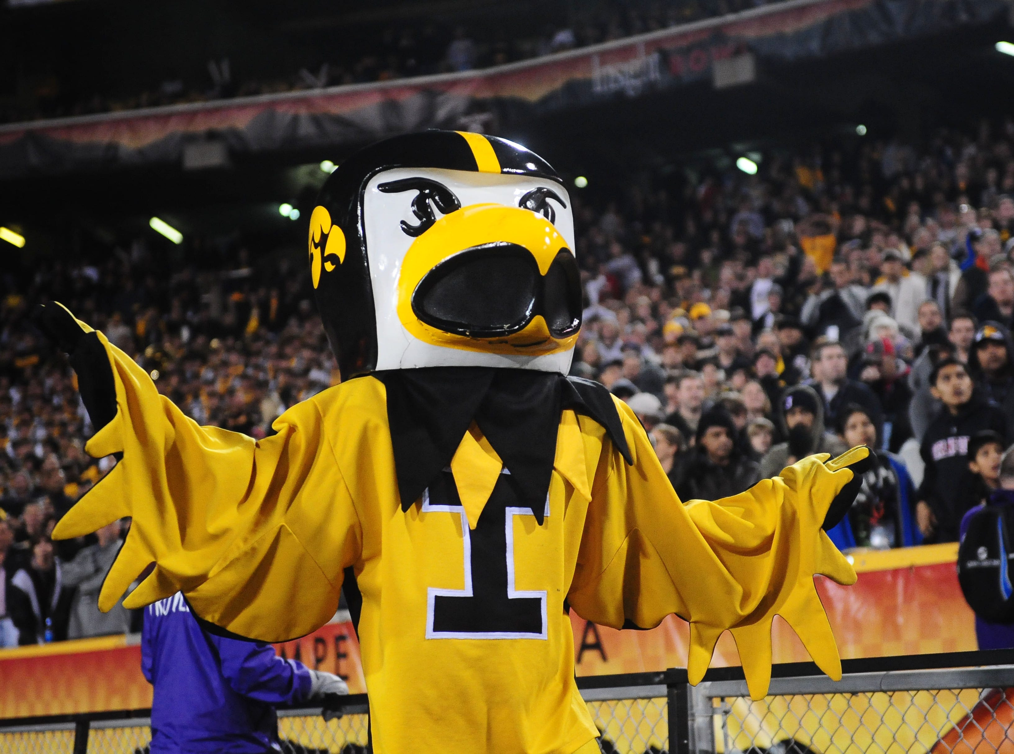 Dec. 28, 2010; Tempe, AZ, USA; Iowa Hawkeyes mascot Herky the Hawk against the Missouri Tigers in the 2010 Insight Bowl at Sun Devil Stadium. Iowa defeated Missouri 27-24. Mandatory Credit: Mark J. Rebilas-USA TODAY Sports