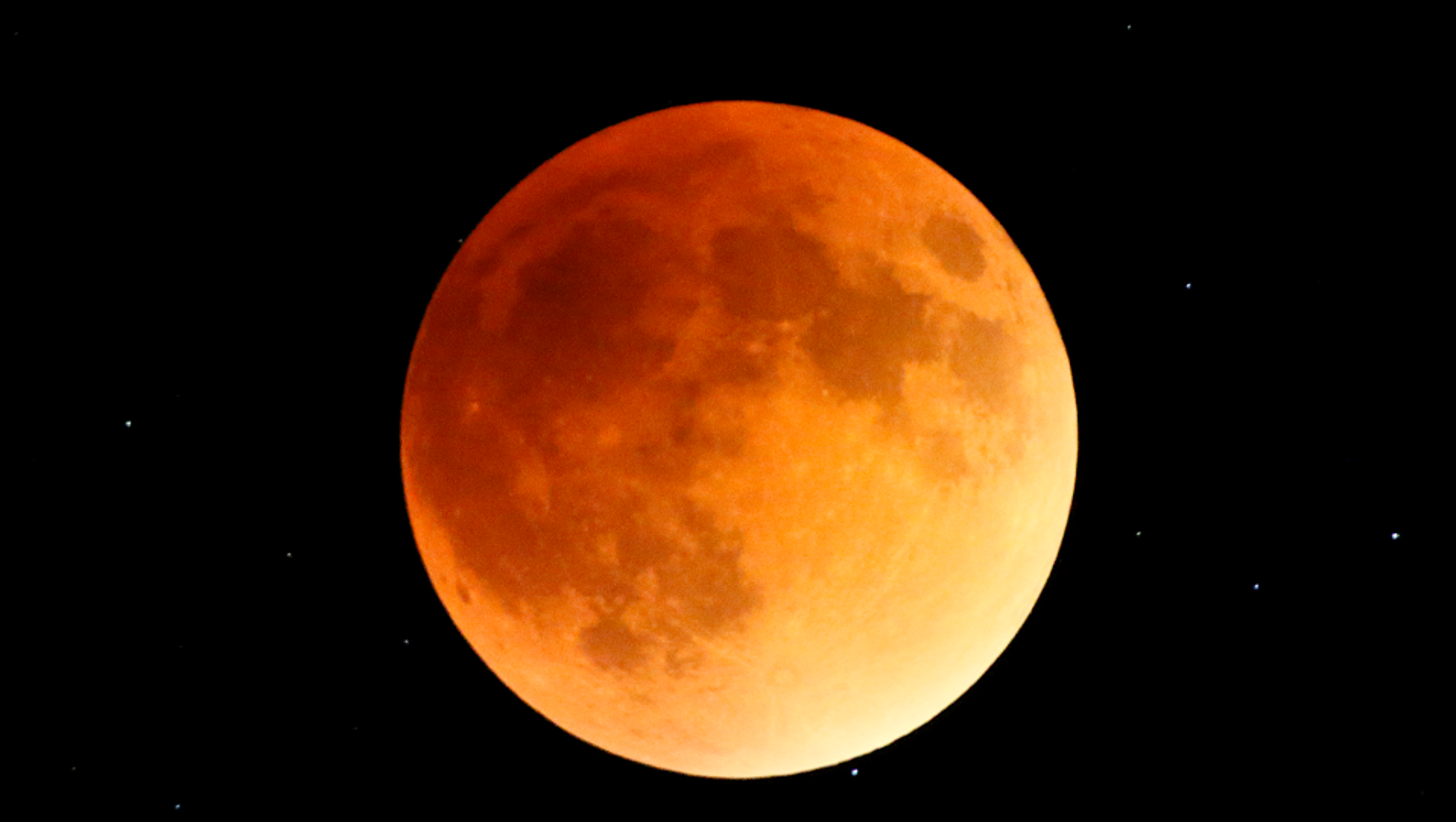 wolf blood moon january 2019 florida - photo #10