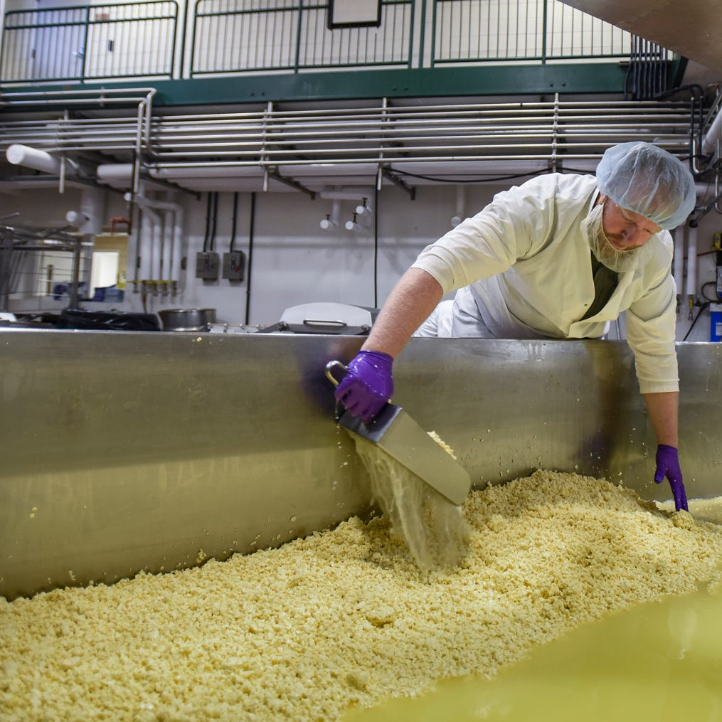 All the things you never knew about Michigan State University cheeses