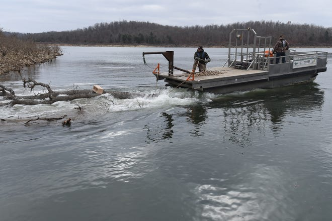 Arkansas Game and Fish Commission personnel use a barge to tow a tree to a fish attractor site on Norfork Lake Tuesday. Heavy cinder blocks are attached to the trees to sink them.
