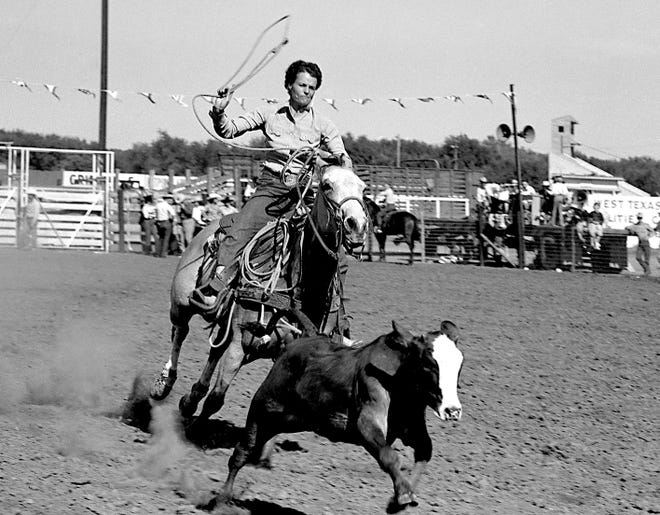 A cowgirl goes after a calf during a 1940s rodeo roping competition sanctioned by the Girls Rodeo Association.