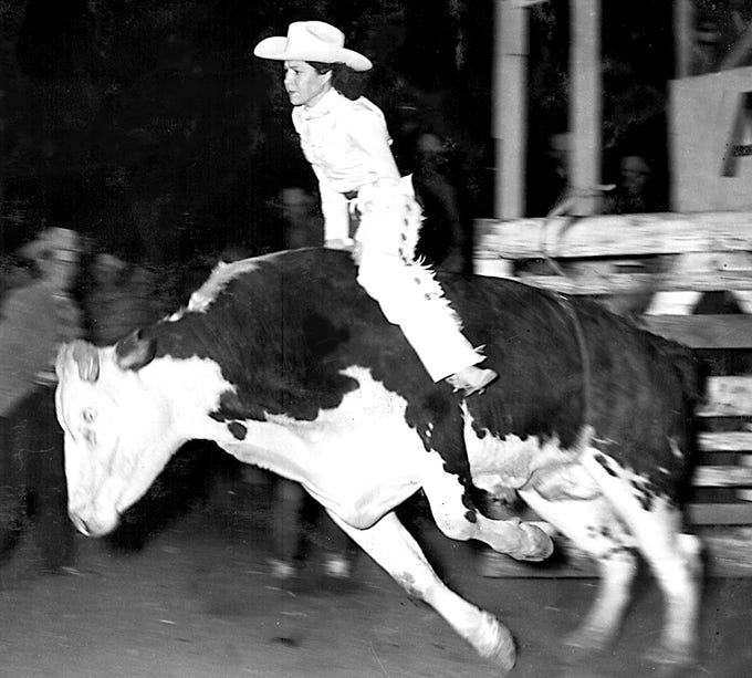 Cowgirl Fran Sawyer comes out of the chute while riding a steer during a 1941 bull riding rodeo sanctioned by the Girls Rodeo Association rodeo.