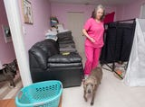 The owner of a Cantonment rescue shelter details the functional issues of her current property and her plans once she moves out of it in December.