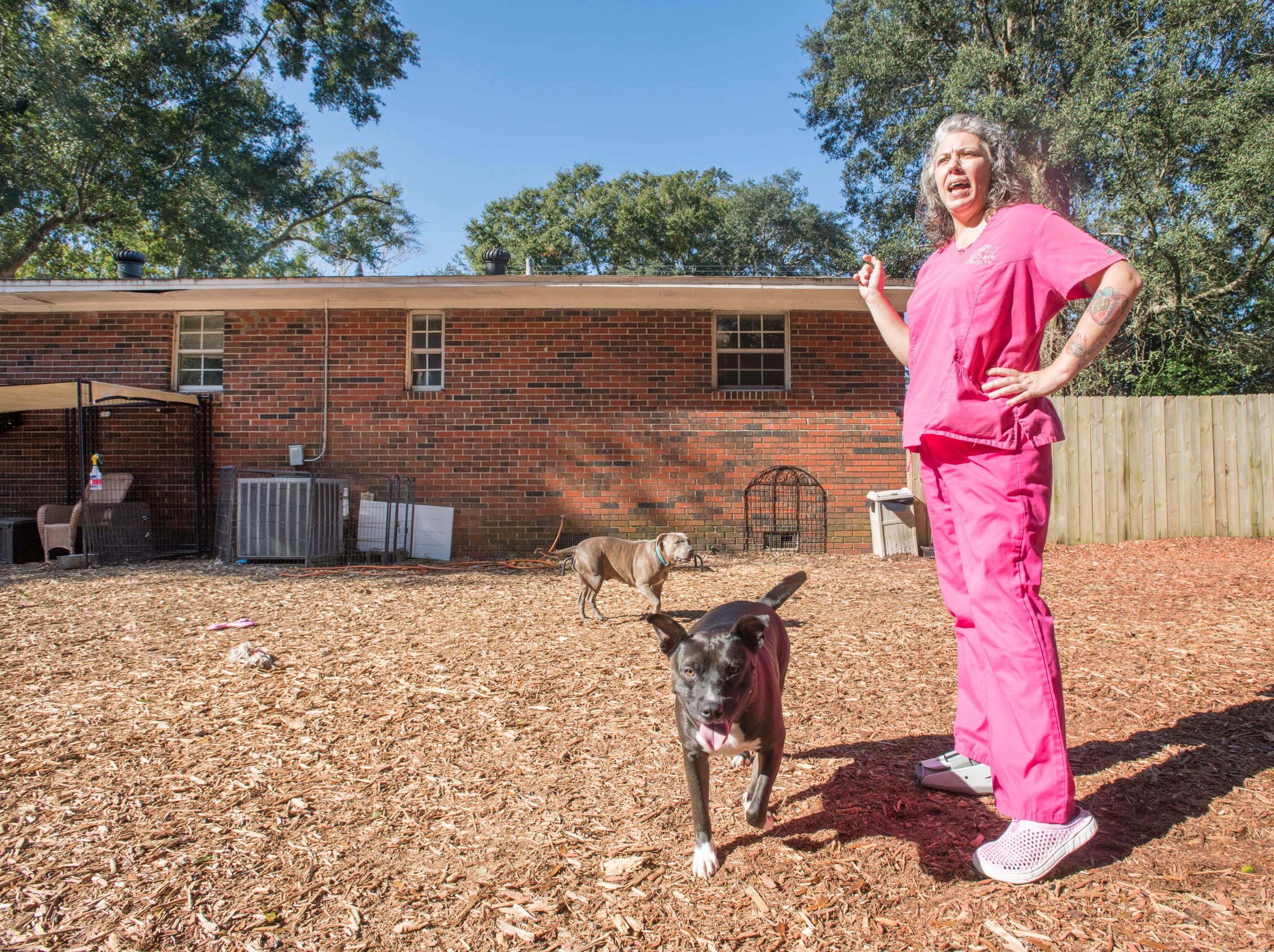 Carrie Turner points out the leaking roof at the Phoenix Rising Rescue & Adoption Center in Cantonment on Tuesday, December 4, 2018.