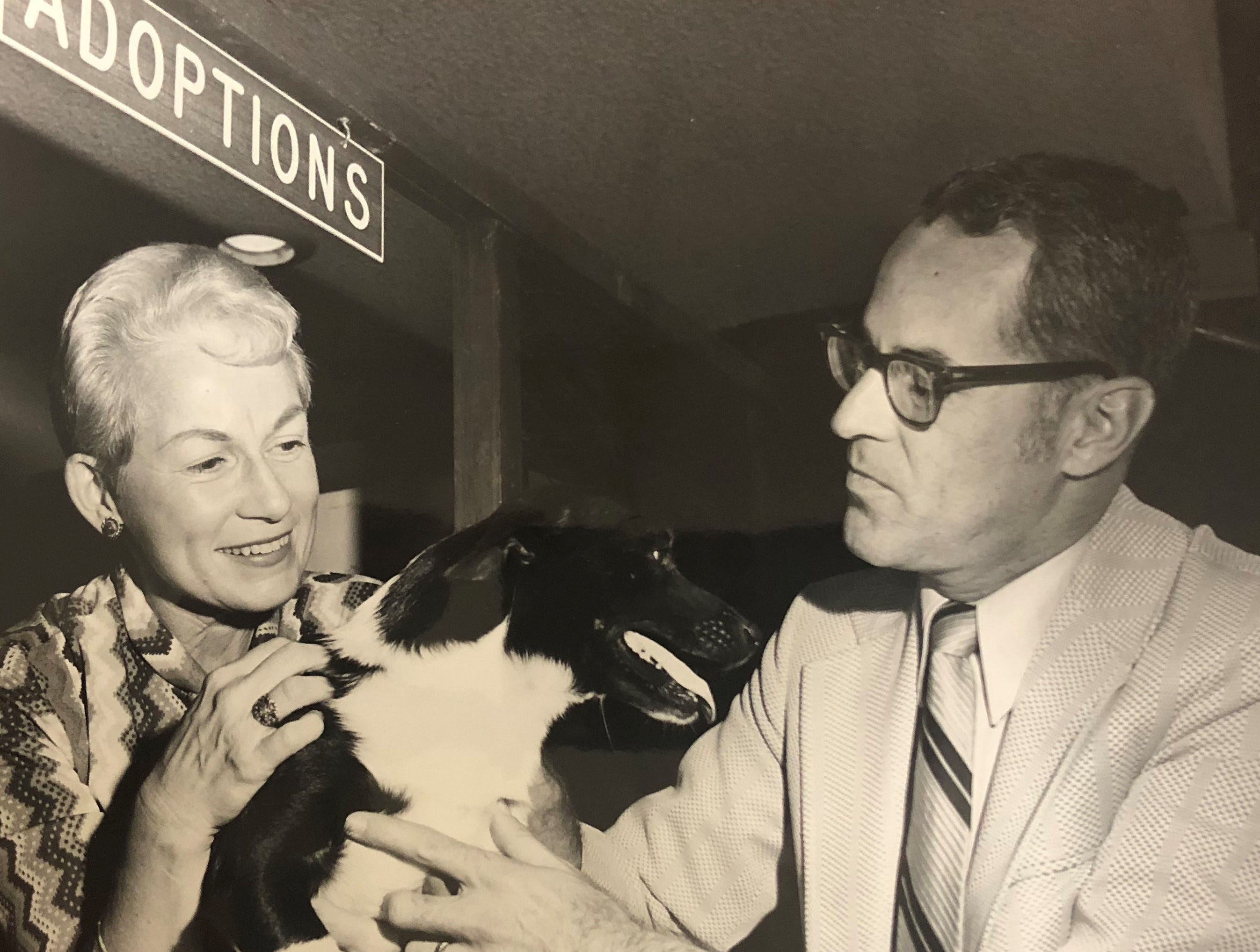 31,000 animals later, 'Pets on Parade' from Channel 3 turns 60