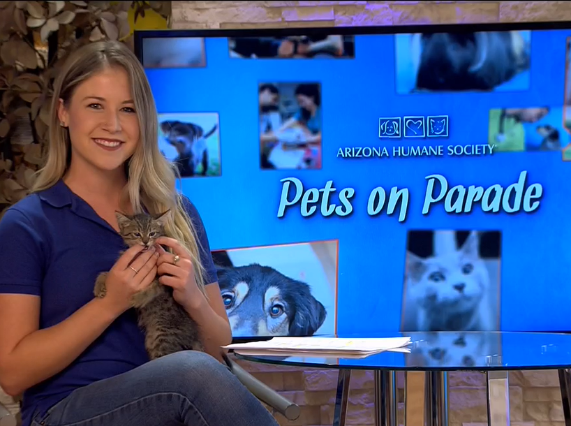 "Kelsey Dickerson is the current host of ""Pets on Parade."""