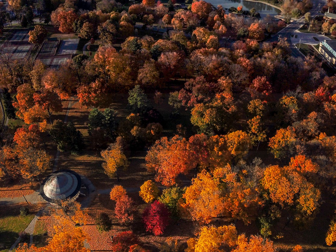 Farquar Park is a blast of autumn color in this panoramic photography created with a drone, Sunday, November 4, 2018. John A. Pavoncello photo