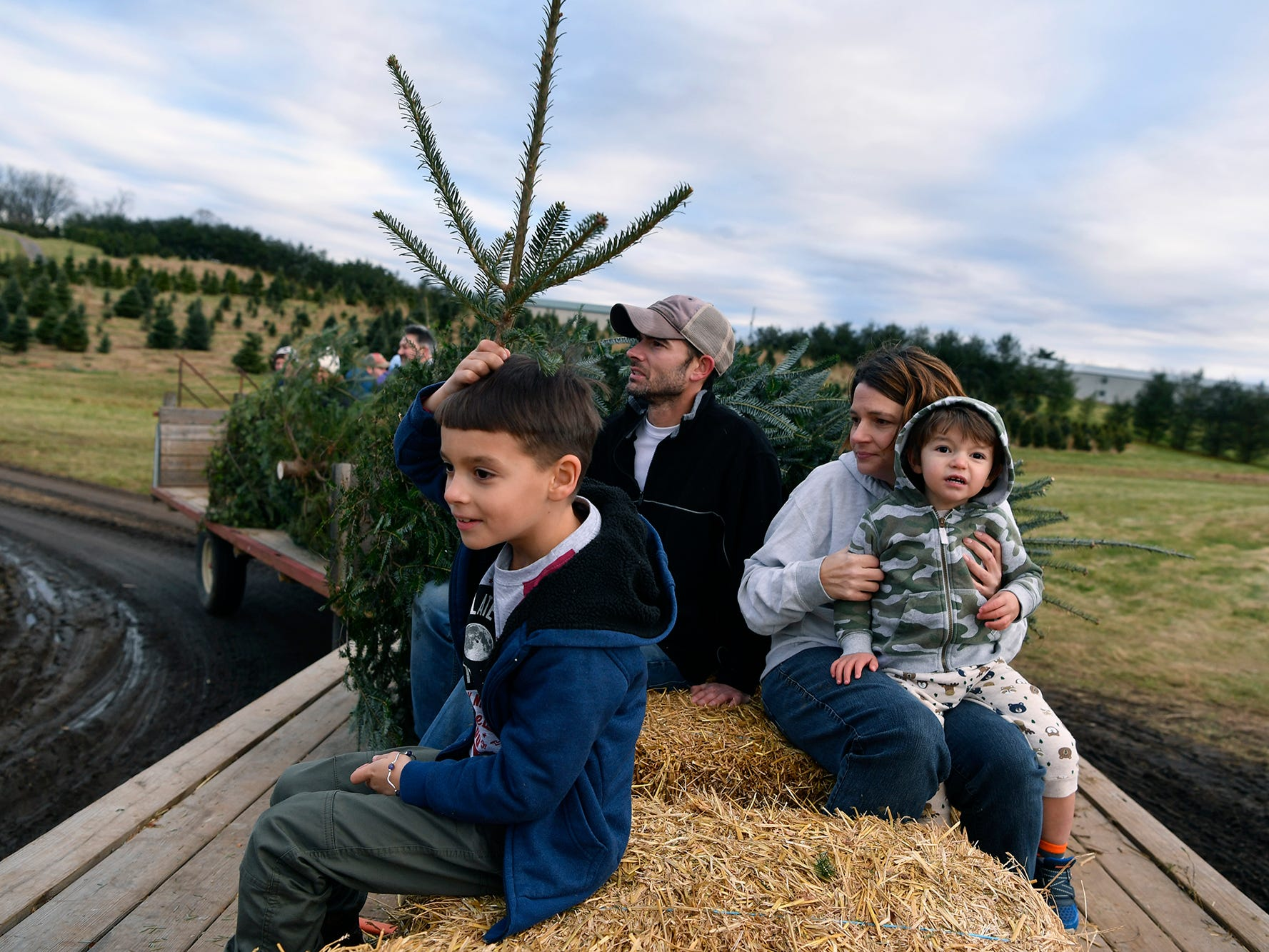 River Kuykendall, 7, left, makes himself into a tree as he and his family, father Brandon, mother Kerri and brother Tristan, 2, ride the tractor back with their freshly cut Christmas tree at  McCurdy's Tree Farm in Dillsburg  December 3, 2018. 