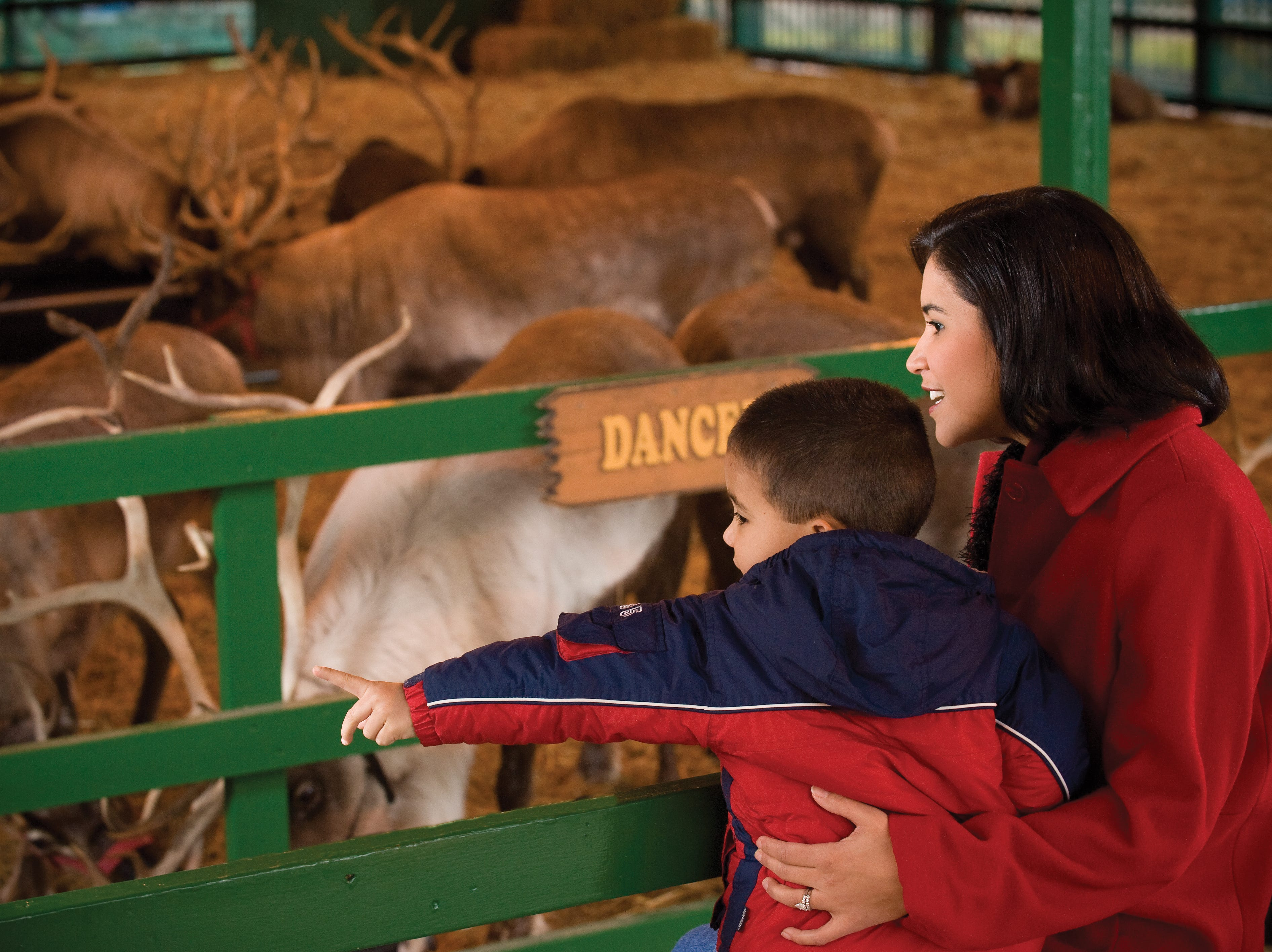 Guests can visit Santa's Stables and see all 9 reindeer during normal park operating hours.
