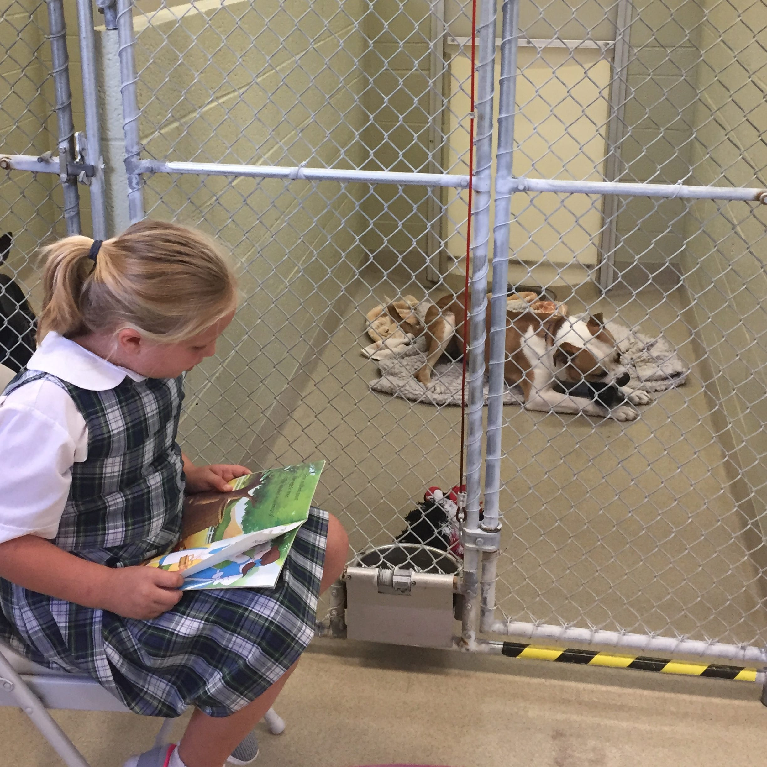 Pet project: 'Dog Tales Reading Program' helping St. Helen first-graders improve literacy skills