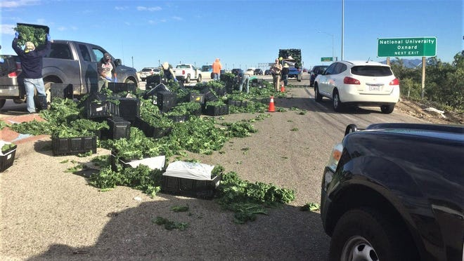 Pallets of kale spilled out of a pickup on the southbound Highway 101 on-ramp at Johnson Drive in Ventura on Tuesday afternoon.