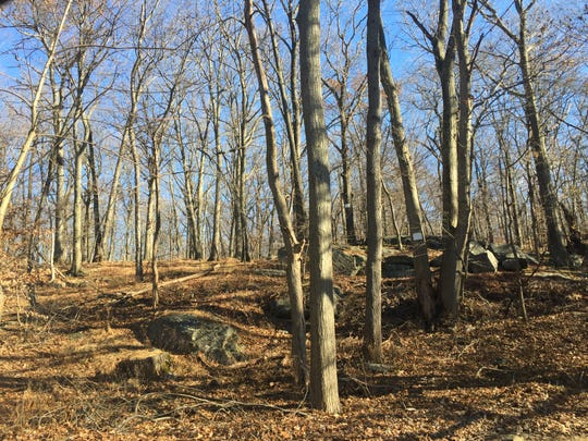 Greenburgh site being considered for solar farm.