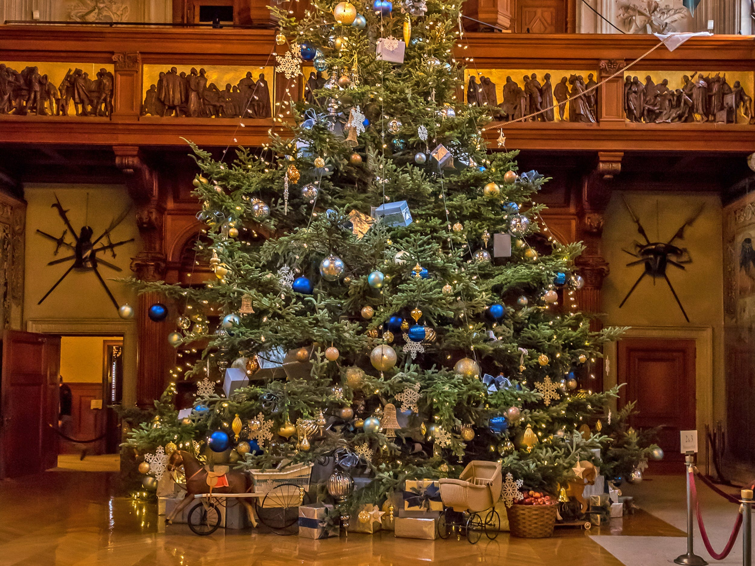 The Fraser, set up and decorated in the mansion's Banquet Hall, is a centerpiece of Biltmore holiday events. This photo is of the 2017 tree. The 2018 Fraser – 35 feet tall – is on display through Jan. 8 at Biltmore.