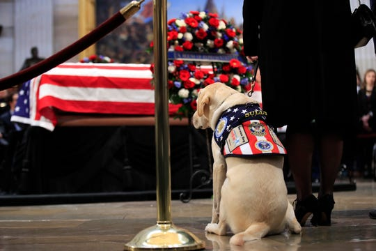 Sully, former President George H.W. Bush's service dog, pays his respect to President Bush as he lie in state at the U.S. Capitol in Washington, Tuesday, Dec. 4, 2018. (AP Photo/Manuel Balce Ceneta) ORG XMIT: DCMC112