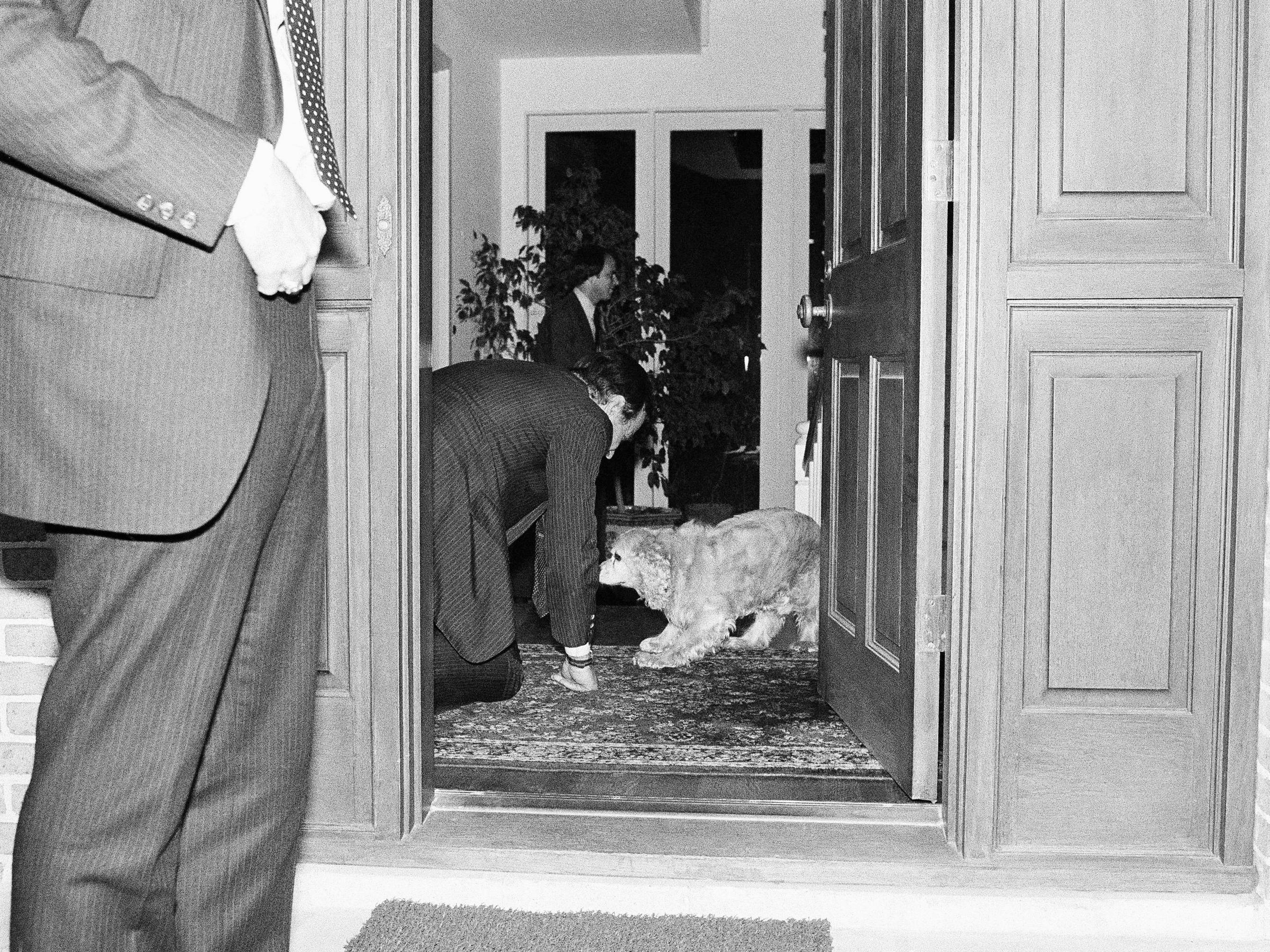 Republican vice presidential candidate George H.W. Bush, on all fours greeting the family dog Freddie, as he arrived at his home, Nov. 3, 1980 in Houston, Texas. Bush returned to Houston to vote in the national election tomorrow and then take returns. (AP Photo/Bill Haber)