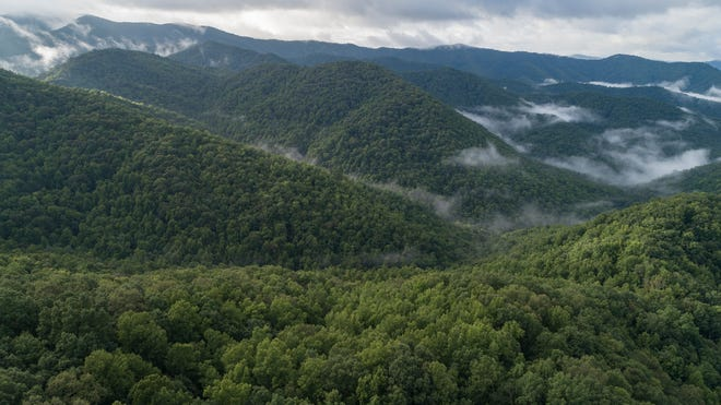 Mainspring Conservation Trust was awarded more than $604,000 to purchase the 504-acre Simp Gap property in Graham County is within the viewshed of the Appalachian Trail, as seen from this drone photo.