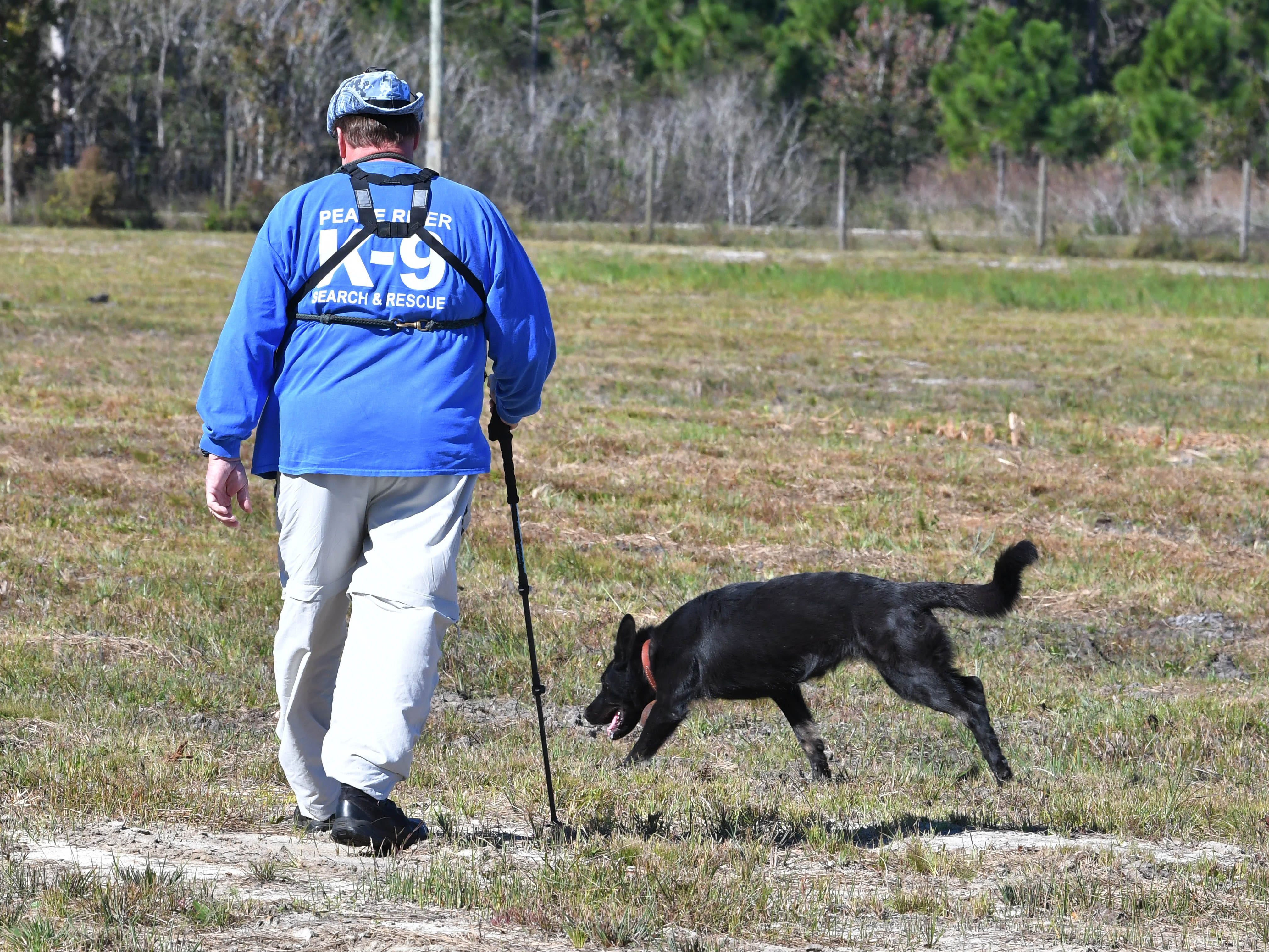 Mike Hadsell of Peace River K-9 Search and Rescue with his dog Damma. On Wednesday, renewed searches began for the remains of missing firefighter Brandy Hall, who disappeared more than 12 years ago. A field that had been a wooded area at the time of her disappearance was among the areas combed over.